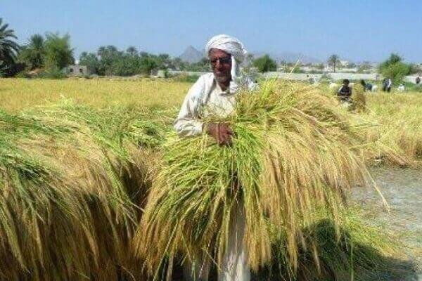 ۲عکس تبعیض سیستان و بلوچستان