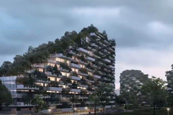 اولین شهر- جنگل