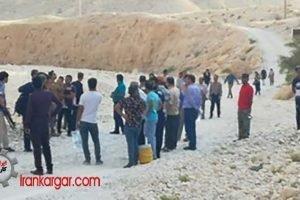 طرفداران محیط زیست استان بوشهر