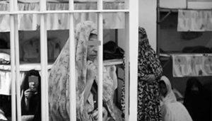 زندان سپیدار