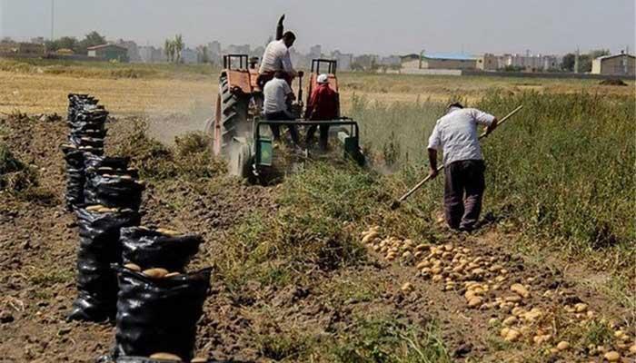 کشاورزان