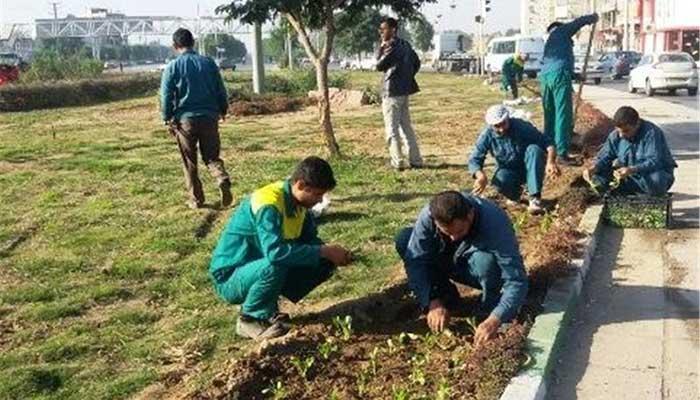 خدمات و فضای سبز شهرداری