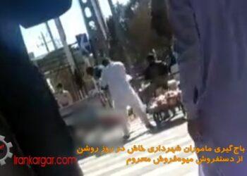 فیلم باجگیری ماموران شهرداری در روز روشن از دستفروشان