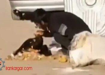 غذا خوردن از کیسه زباله