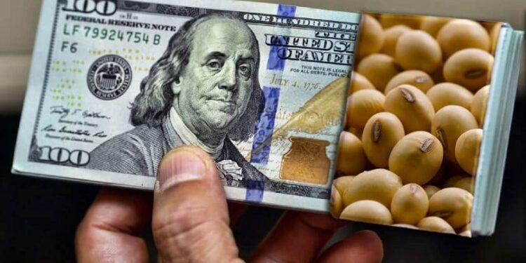 ۲ میلیارد دلار نهاده دامی