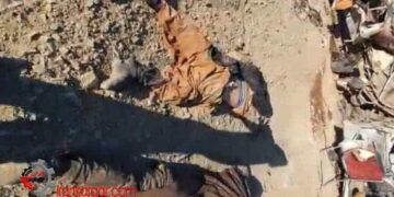 فیلم تصادف فجیع و مرگبار با بیش از ۵۰ کشته و مجروح در محور خاش