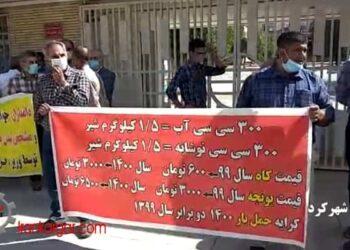 تجمع اعتراضی دامداران در اعتراض به کمبود و گرانی نهادههای دامی در شهر کرد و نیشابور - فیلم