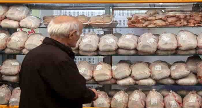 گران شدن مرغ
